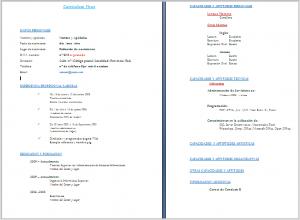 Imagen modelo currículum nº2